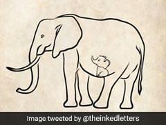 How Heartbroken Twitter Mourned Elephant That Ate Cracker-Filled Fruit