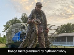 Snake Hunter Left Bleeding After Fight With 17-Foot Python