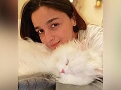 "Alia Bhatt Shares A Pic With Her ""Calm In Every Storm."" See Her Latest Post"