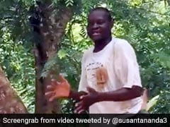 विदेशी ने पेड़ पर चढ़कर गाया अमिताभ बच्चन का गाना, ताली बजाकर दिया जबरदस्त म्यूजिक - देखें Viral Video