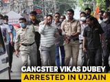 Video : Top News Of The Day: UP Gangster's Dramatic Arrest From Madhya Pradesh Temple