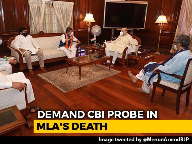 Video : BJP Leaders Meet Amit Shah, Seek CBI Probe In Bengal MLA's Death