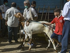 Unhappy With Bakri Eid Rules, Maharashtra Leaders Write To Chief Minister