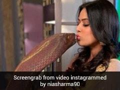 टीवी की इच्छाधारी 'नागिन' निया शर्मा ने किया असली नागिन को किस, इंटरनेट पर Photos ने मचाया तहलका