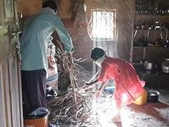 NDTV Exclusive: सब्जियों की जगह जंगल की वनस्पति से काम चलाने के लिए मजबूर आदिवासी