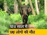 Video : देस की बात रवीश कुमार के साथ: जंगली हाथी और इंसानों का संघर्ष
