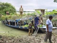 Unprecedented Floods Create Food Shortage For Rhinos In Assam's Pobitora