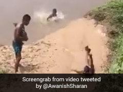 बारिश में बच्चों ने कीचड़ में फिसलकर मारी नदी में छलांग, IAS ऑफिसर बोला- 'गांव का एसेल वर्ल्ड' - देखें Video