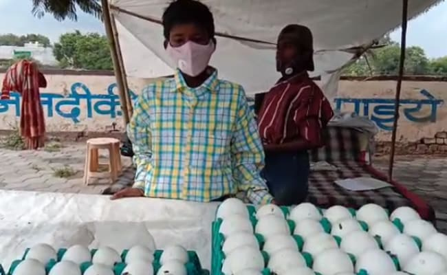 Flat, Free Education For Indore Egg Seller Whose Cart Was Overturned Allegedly Over Rs. 100 Bribe