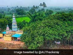 महाराष्ट्र के सांगली में 400 साल पुराने पेड़ को बचाने के लिए हाईवे प्रोजेक्ट में किया गया बदलाव