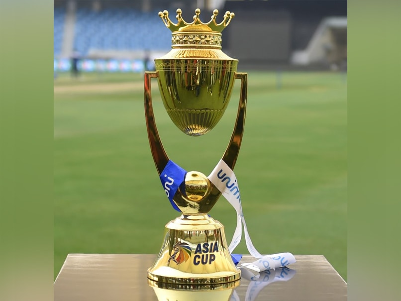 Coronavirus | Asia Cup cricket tournament postponed until June 2021