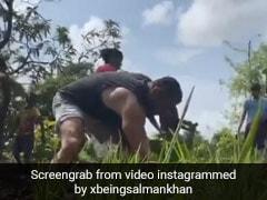 Salman Khan ने खेत में पूरी की धान की बुआई, यूलिया वंतुर भी साथ काम करती आईं नजर- देखें Video