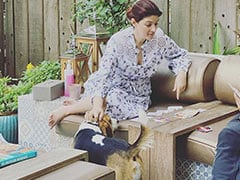 After Twinkle Khanna's Dog Stole Her Toast, An ROFL Post On Who Trained Who