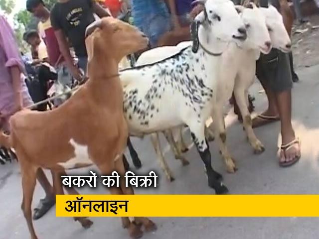Videos : लॉकडाउन के दिन मनेगी बकरीद, ऑनलाइन बिक रहे हैं कुर्बानी के बकरे