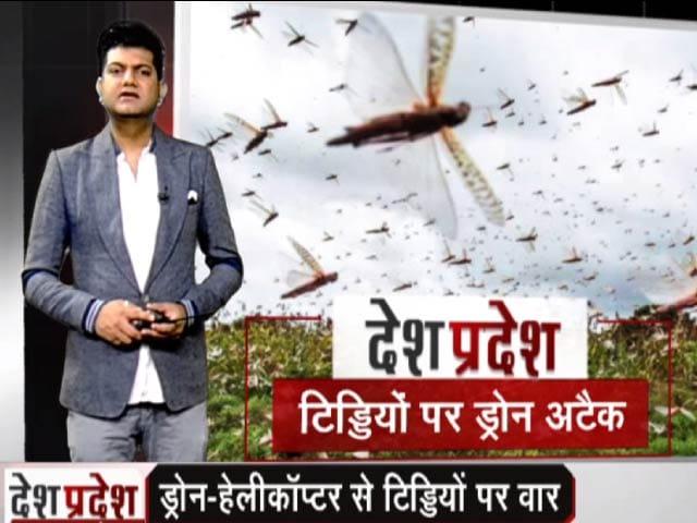 Video : देश प्रदेश: ड्रोन-हेलीकॉप्टर से टिड्डियों पर वार