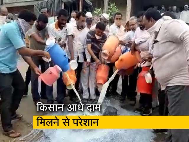 Videos : महाराष्ट्र में दूध उत्पादक किसान क्यों आंदोलन पर उतारू?