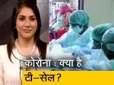 Video : क्या टी-सेल से दोबारा कोरोना संक्रमण का खतरा कम?