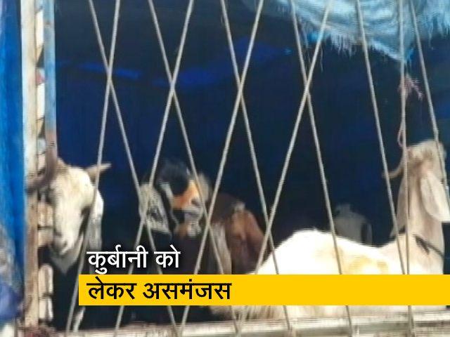 Videos : बकरीद में कुर्बानी पर असमंजस