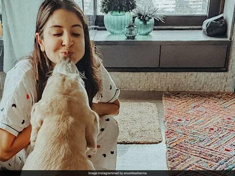 "Virat Kohli All-Heart For Anushka Sharmas Pictures With ""Sweet-Smoosh-Doggo Dude"""