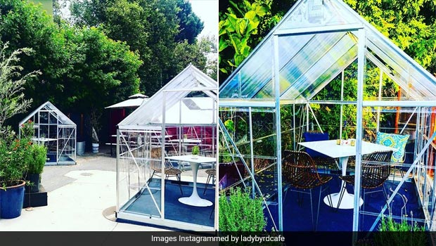 Los Angeles Cafe Sets Up Mini Greenhouses For Safe Post Covid Dining