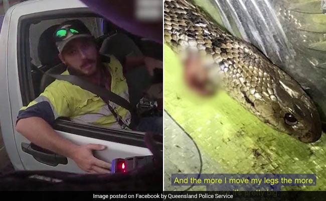चलती कार में हुई सांप और शख्स के बीच जंग, पैरों में आकर लिपटा तो किया कुछ ऐसा... देखें पूरा Video