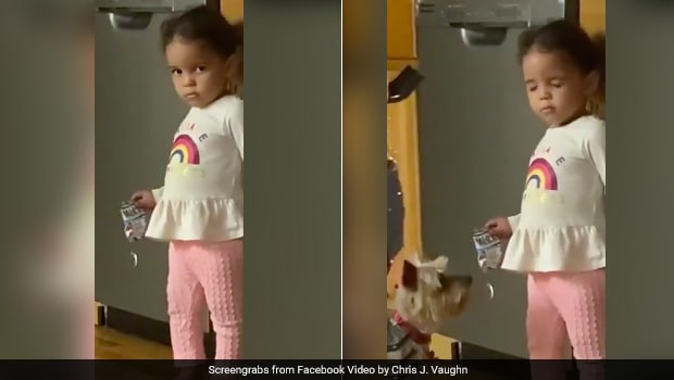 Little Girl Gets Caught Trying To Grab Snack, Her Cute Cover-Up Will Make You Smile! thumbnail