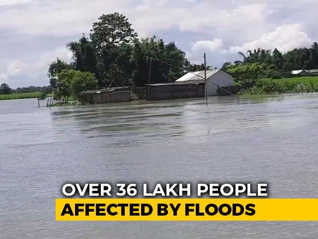 Video : Stranded On Sliver Of High Ground: Scenes In Flood-Hit Assam