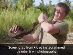 Robert Irwin Shares Video That Shows Him Being Attacked By Snake