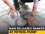 Video : Caught On CCTV: Man Releases Snakes, Including Cobras, At Petrol Pump | NDTV Beeps