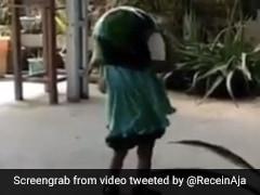बच्ची ने सिर पर पहना बहुत बड़ा हेलमेट, टकराई खंभे से, फिर हुआ ऐसा - देखें Viral Video