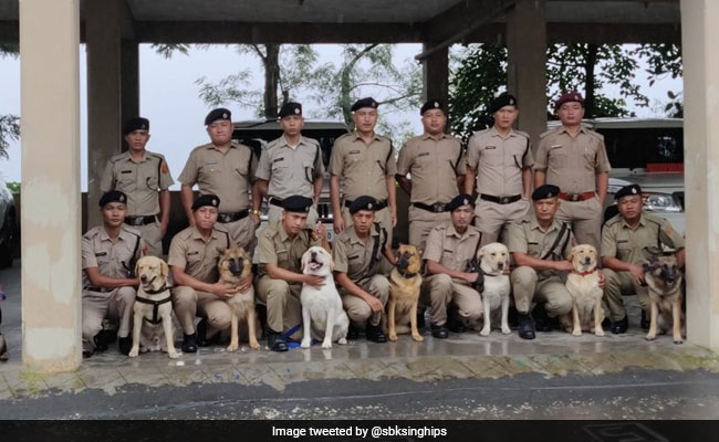 Mizoram Revives Dog Squad Created 20 Years Ago, Inducts 8 Canines