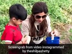शिल्पा शेट्टी ने पूरी तरह से अपनाया शाकाहारी जीवन, खेतों में यूं सब्जियां छांटती दिखीं एक्ट्रेस- देखें Video