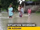 Video : Flood Water Breaching Embankments In Assam, Endangering Crops