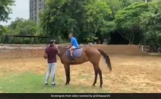 Shikhar Dhawan Gives Son Zoraver Horse Riding Lesson Watch Video