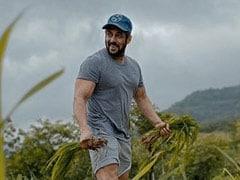 """Rice Plantation Done,"" Salman Khan Captions New ""Farming"" Post. The Internet Has Mixed Reactions"