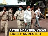 Video : The Dramatic Temple Find Of Gangster Vikas Dubey