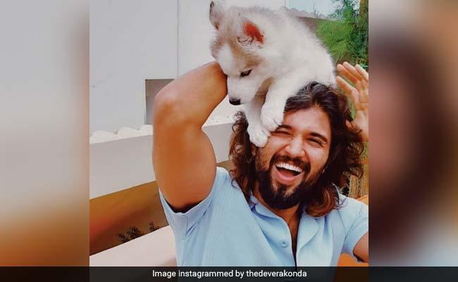 Vijay Deverakonda And His New Partner-In-Crime Raise A 'Storm' On Instagram
