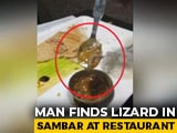 "Video : ""Half Of It Missing"": Man Finds Lizard In Sambhar At Top Delhi Restaurant"