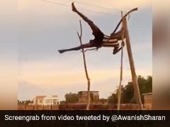 गांव के बच्चों ने जुगाड़ से खेला Olympic गेम, डंडे पर खड़े होकर दिखाए करतब, IAS बोला- WOW - देखें Video