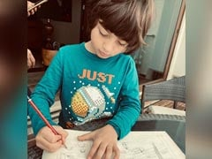 """Lockdown Is Definitely Not A Vacation"": What's Keeping Gauri Khan And Son AbRam Busy These Days"