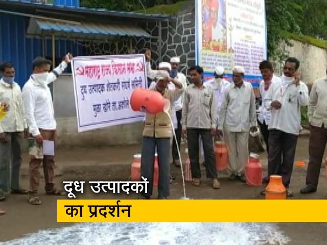 Videos : दूध की सही कीमत नहीं मिलने के विरोध में प्रदर्शन