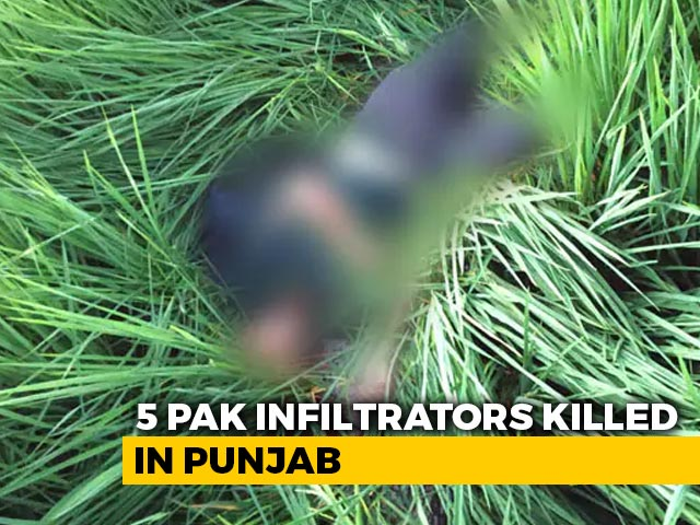 Video : 5 Infiltrators Shot Dead By BSF Along The Border With Pakistan In Punjab