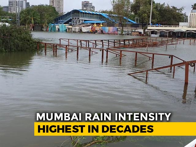 Video : Mumbai: Rain Reduces, Transport Services Resume