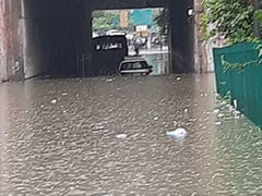 Heavy Rain Uproots Trees, Leads To Waterlogging Across Delhi: Official Report