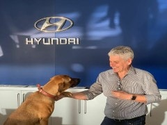 Hyundai Brazil's New Employee Of The Year Is A Dog That's Winning Hearts All Over The Internet