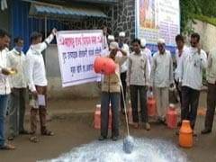 Maharashtra Farmers Spill Milk To Protest Prices, Centre's Import Of Powder