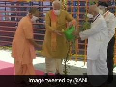Watch: PM Narendra Modi Plants Parijat Sapling At Ram Temple
