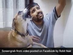 शख्स ने सुरीली आवाज में गाया गाना, तो पीछे से कुत्ते ने भी छेड़ दिए सुर... देखें मजेदार Video