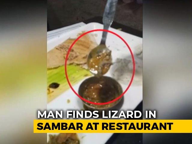 Video : Viral Video: Man Finds Lizard In Sambar At Top Delhi Restaurant | NDTV Beeps