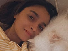 Pic: The One With Alia Bhatt And Her Furry Friend Edward